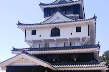 Iwakuni Castle, Iwakuni, Japan