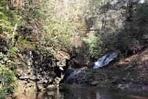 Sea Creek Falls, Suches, United States