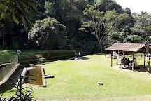 Parque Estadual da Cantareira - Nucleo Pedra Grande, Sao Paulo, Brazil
