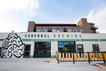Cerebral Brewing, Denver, United States