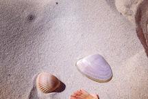 Tugun Beach, Tugun, Australia
