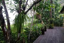 Estacion Biologica Las Guacamayas, Flores, Guatemala