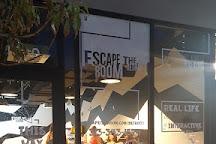 Escape the Room Detroit, Detroit, United States