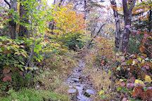 Hunter Mountain, Hunter, United States