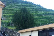 Tenuta La Gatta, Bianzone, Italy