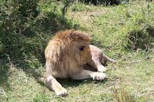 Phil Travel Safari, Nairobi, Kenya