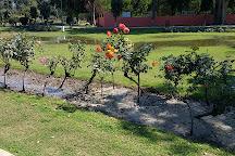 Rose Garden, Bathinda, India