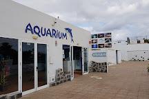 Lanzarote Aquarium, Costa Teguise, Spain