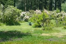 Azalea Park, Brookings, United States
