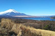 Lake Yamanaka Panorama Deck, Yamanakako-mura, Japan