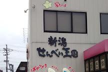 Niigata Nippo Media Ship, Niigata, Japan