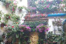 Patios de Cordoba, Cordoba, Spain