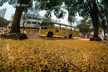 Calcadao de Londrina, Londrina, Brazil
