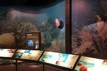 Florida Keys Eco-Discovery Center, Key West, United States