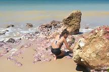 Praia do Carro Quebrado, Maceio, Brazil