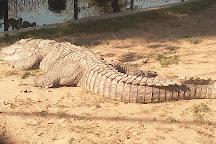 Lahore Zoo, Lahore, Pakistan