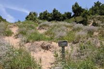 Empire Bluff Trail, Empire, United States