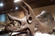 Dakota Dinosaur Museum, Dickinson, United States