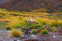 Lascar, San Pedro de Atacama, Chile
