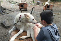 Hilltown Sleddogs, Chesterfield, United States