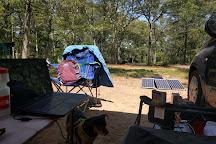 Nickerson State Park, Brewster, United States