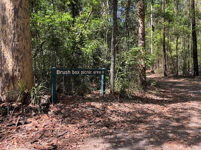 Brush Box Picnic Area