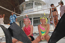 Blue Dolphin Charters, Eleele, United States