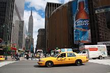 Volatour, New York City, United States