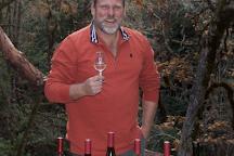 Briceland Vineyards, Redway, United States