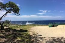 Mapu'a 'a Vaea Blowholes, Tongatapu Island, Tonga