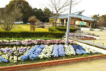 Benten Fureai no Mori Park, Urayasu, Japan