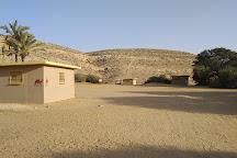 Negev Camel Ranch, Dimona, Israel