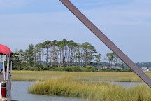Chincoteague National Wildlife Refuge, Chincoteague Island, United States
