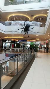 Mall del Sur 8