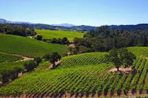 Trattore Farms and Winery, Geyserville, United States