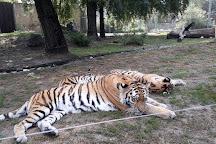 Debrecen Zoo and Amusement Park, Debrecen, Hungary