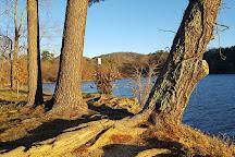 Beaver Lake Bird Sanctuary, Asheville, United States