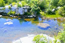 Cranberry Lake Preserve, White Plains, United States