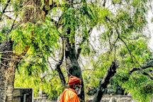Saptarshi Ashram, Haridwar, India