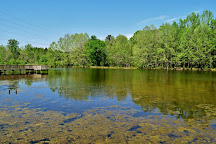 Brumley Forest Nature Preserve, Chapel Hill, United States