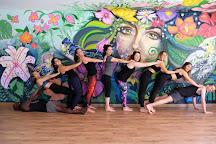 Flying Tree Yoga Studio, Medellin, Colombia
