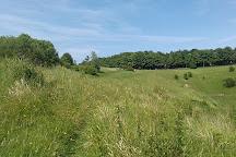 Wye National Nature Reserve, Wye, United Kingdom