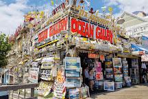 Ocean Gallery, Ocean City, United States
