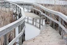 Sackville Waterfowl Park, Sackville, Canada