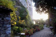 L'Olivier Millenaire, Roquebrune-Cap-Martin, France