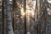 Taganai National Park, Zlatoust, Russia