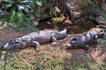 Zooparque, Itatiba, Brazil