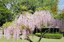 Tojogaoka Historical Park, Matsudo, Japan