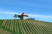 Zlati Grič Wine Cellar, Slovenske Konjice, Slovenia