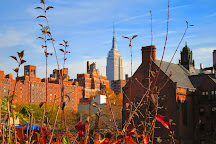 Manhattan Walking Tour, New York City, United States